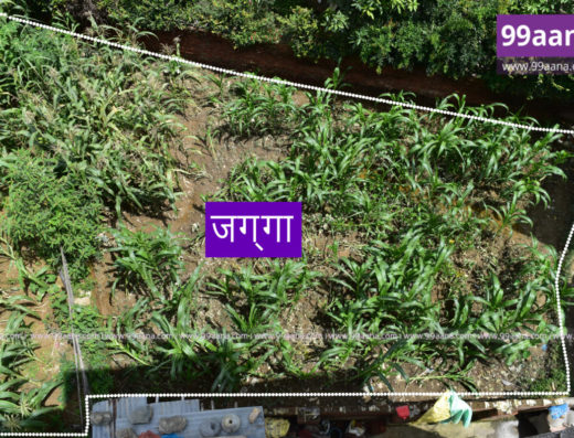 Residential Land for sale at Nakhipot, Lalitpur
