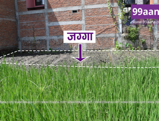 Residential Land for Sale at Chysal, Lalitpur