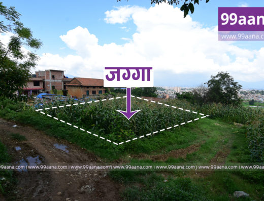 Residential Land for Sale at Dhapakhel
