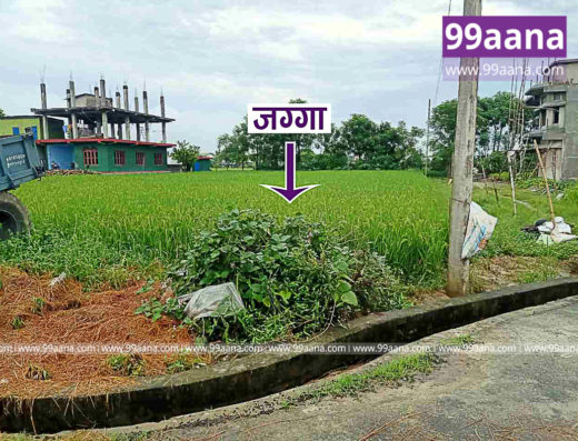 Residential Land for sale at Tadi, Chitwan