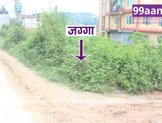 Land for Sale at Bhatkepati