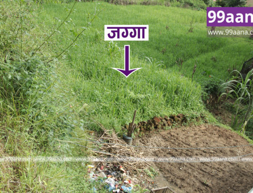 Land for Sale at Raniban