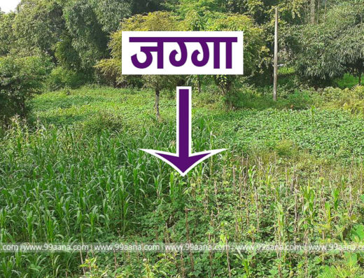 Land for Sale at Pokhara Nepal