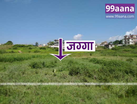 Land for Sale at Kritipur, Chhap