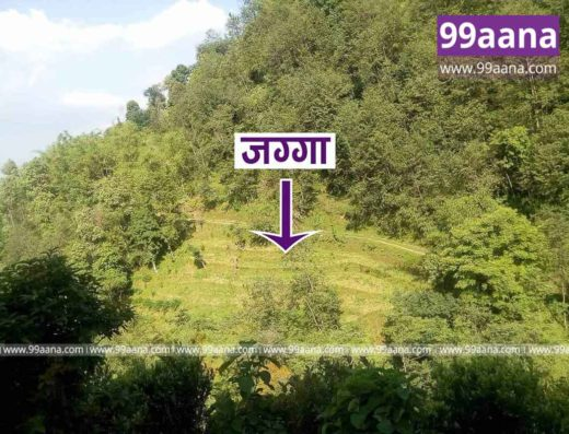 Land for Sale at Kushadevi, Panauti