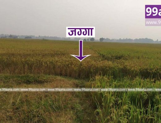 Land for Sale at Sanskritik, Lumbini