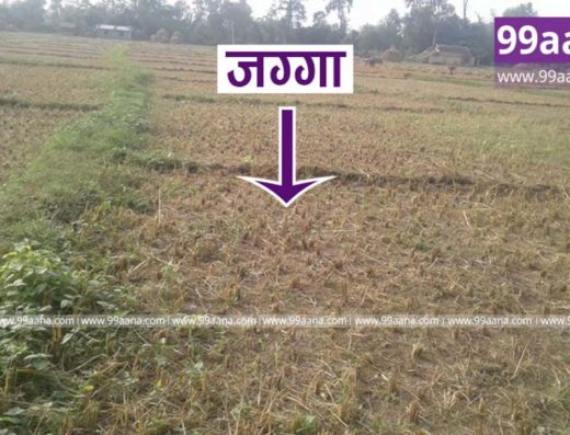 Land for sale at Ghodaghodi Kailali