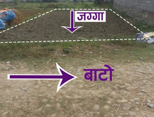 Land For Sale at Akanta Tol, Pokhara Lekhnath