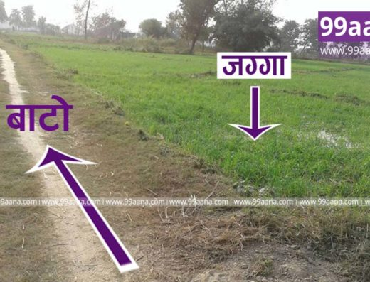 Land for sale at Tarkulha, Rupandehi