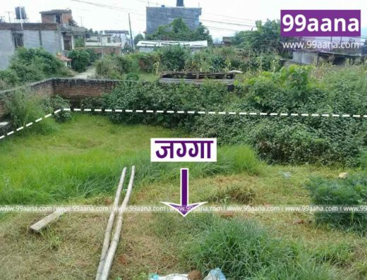 land for sale at thankot