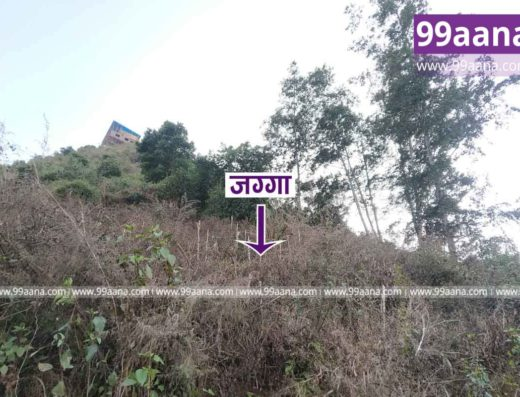 land for sale at chalnakhel, Dakshinkali-2635