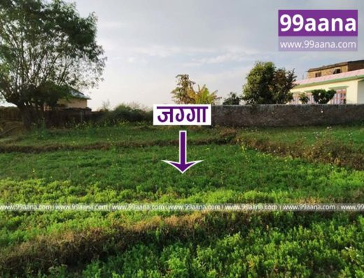 land for sale at tulsipur, dang - 2656