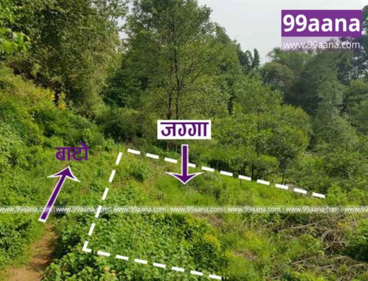 land for sale at hepali budhanilkantha-2811