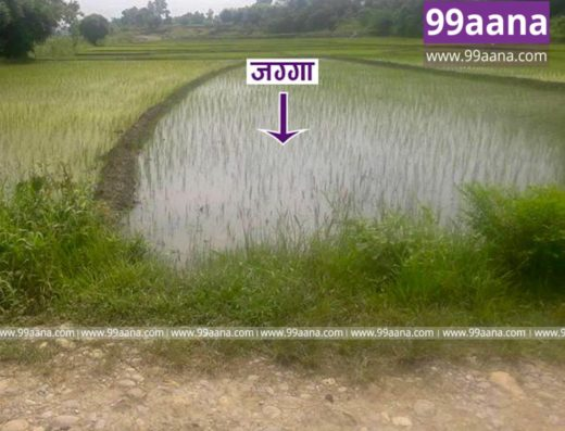 land for sale at bharatpur, chitwan - 2563