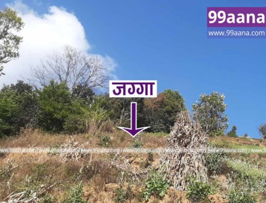 Land for sale at Panauti, Kavrepalanchok