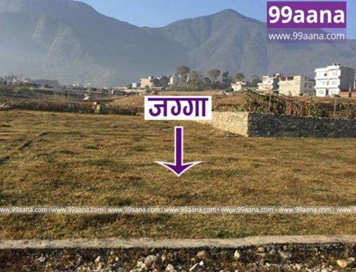 Land for sale at dhalpa