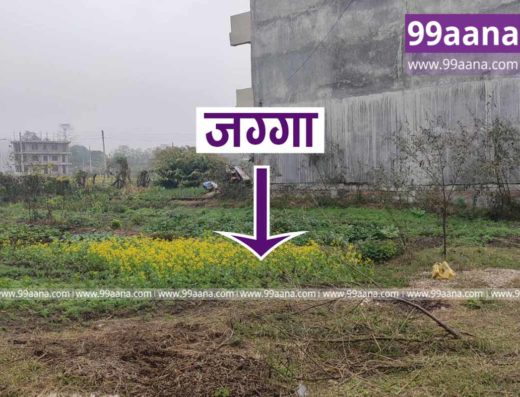 land for sale at bharatpur-3003