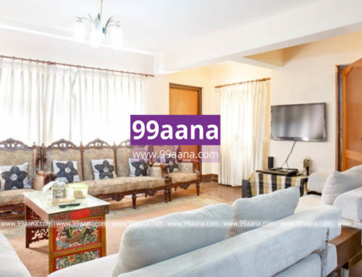 Apartment for rent at thamel