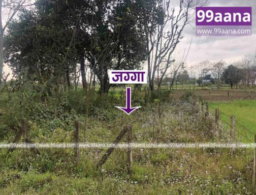 land for sale at Chitwan-3650