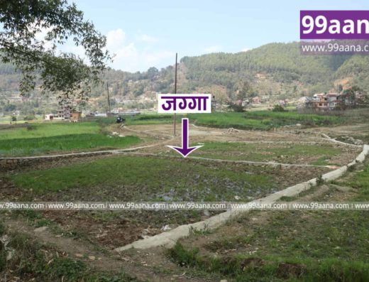land for sale at lalitpur-3681