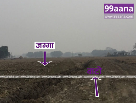 Land for sale at bhadrapur