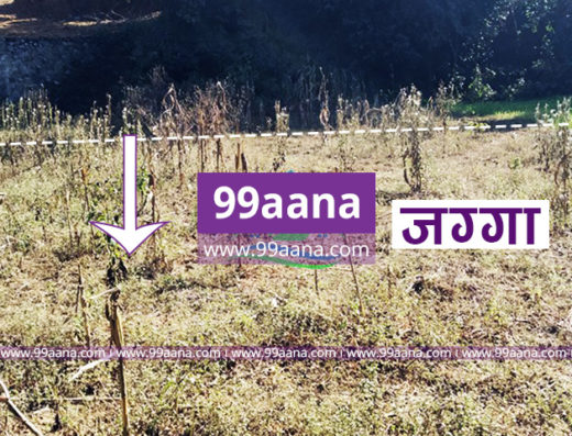 Land for sale at Parigaun Road, Chapagaun, Lalitpur