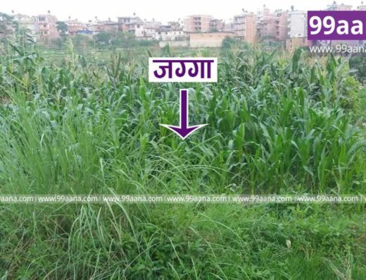 Land for sale at Dhunchepakha, Bhaktapur