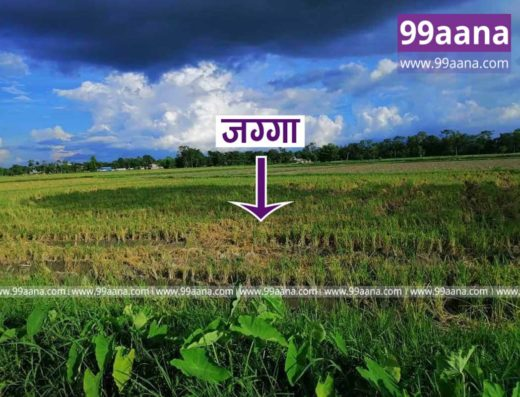 Land for sale at Sultana, Khairahani-07, Chitwan
