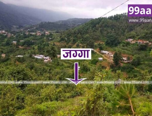 Land for sale at Nallu-04, Lalitpur