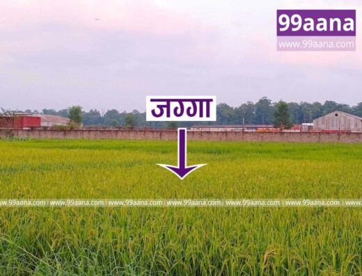 Land for sale at Bharatpur-08, Chitwan