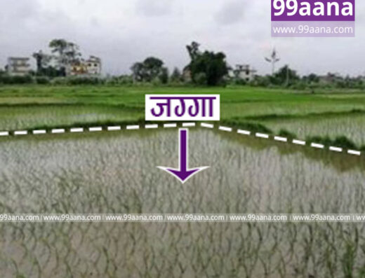Land for sale at Bhalwari, Tilottama-06, Rupandehi