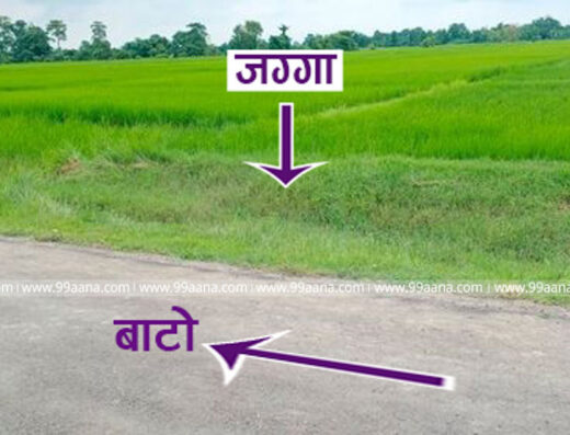Land for Sale at Sainamaina, Rupandehi