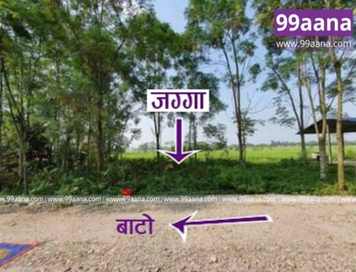 Land for sale at Bharatpur-25, Chitwan