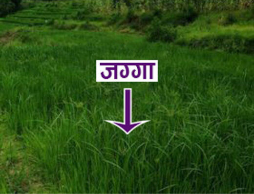 Land for sale at Kapa, Bugmati, Lalitpur