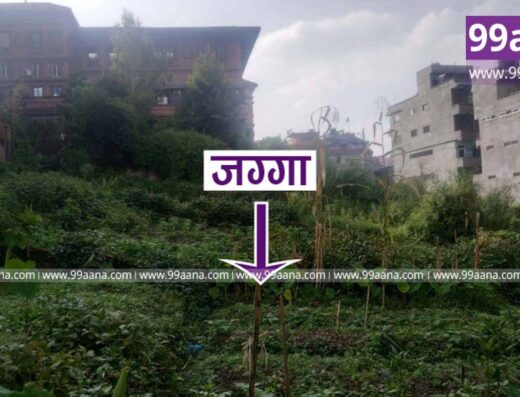 Land for sale at Chyassal, Lalitpur