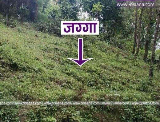 Land for Sale at Panauti, Kavre