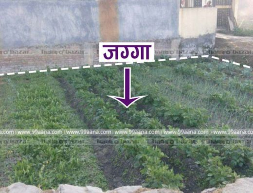 Land for sale at Bode, Madhyapur Thimi, Bhaktapur