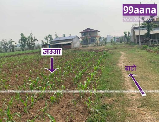 Land for sale at Chitwan