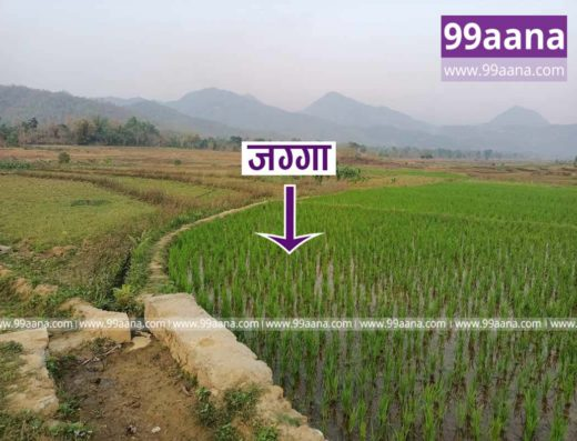 Land for sale at Chyangli, Palungtar-07, Gorkha